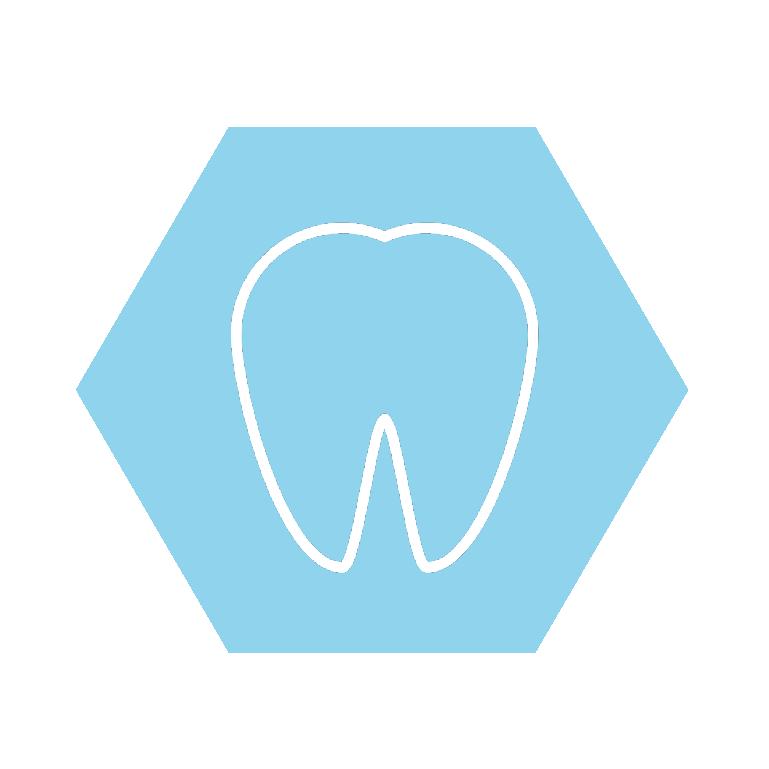 Zahnvektor